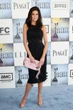 th_55125_Celebutopia-Teri_Hatcher_arrives_at_the_24th_Annual_Film_Independent8s_Spirit_Awards-04_122_1160lo.jpg